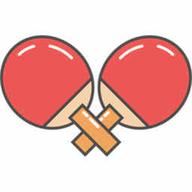 乒乓球王者 v1.0 安卓版