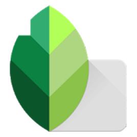 Snapseed修图 v1.0 安卓版