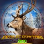 狂野狙击猎人v1.0.7 安卓版