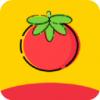 番茄影视 v1.1.3 破解版